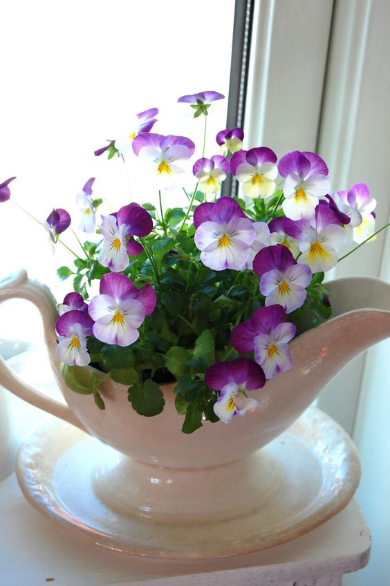 Creative ways to display flowers - gravy bowl - Life on Kaydeross Creek