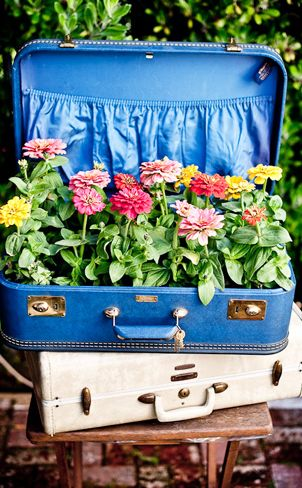 Creative ways to display flowers - suitcase flowers - Life on Kaydeross Creek