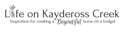 Life on Kaydeross Creek